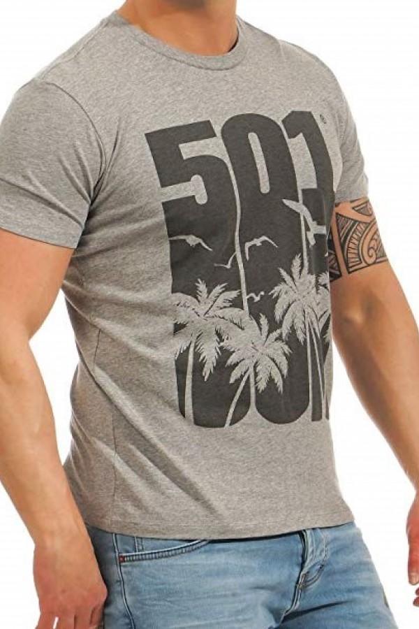 Levis Erkek T-shirt 501-Graphic-Tee-26572-0031