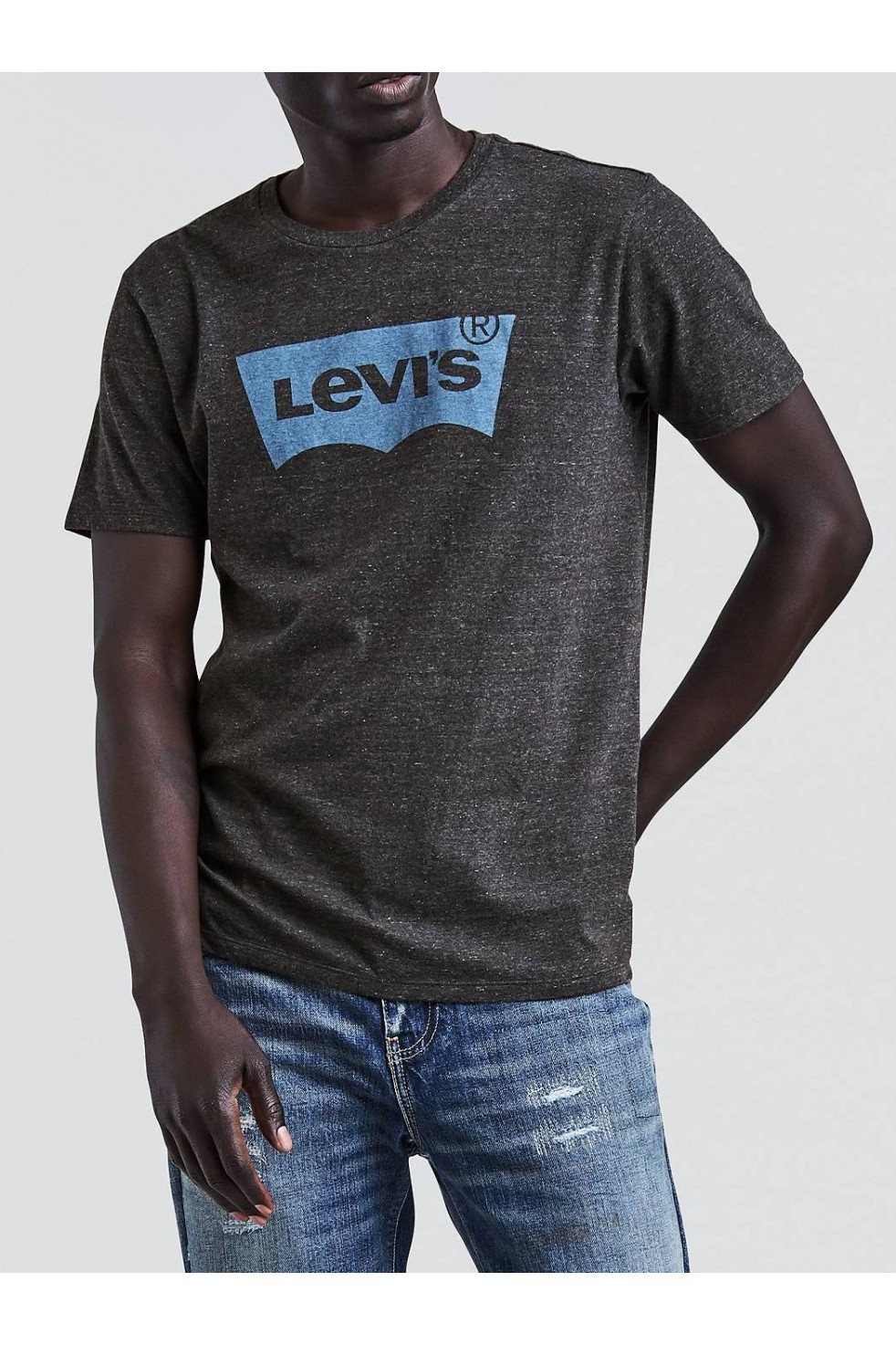 Levis Erkek T-shirt-Housemark-Graphic-Tee-22489-0097